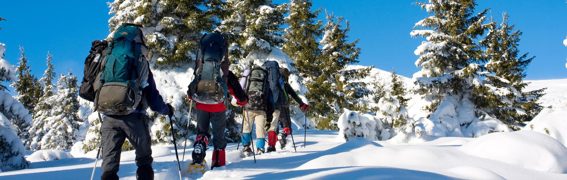 Winterwandern Im Bayerischen Wald Schneeschuhwandern Im